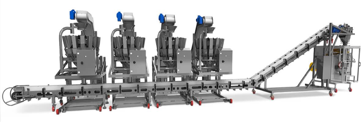 Frozen food multi head conveyor mixing